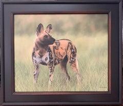 Hayena, wildlife painting by Rachel Stribbling