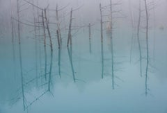Blue Pond - Limited Editions of 15