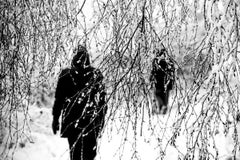 Winter Stroll - Limited Editions of 15