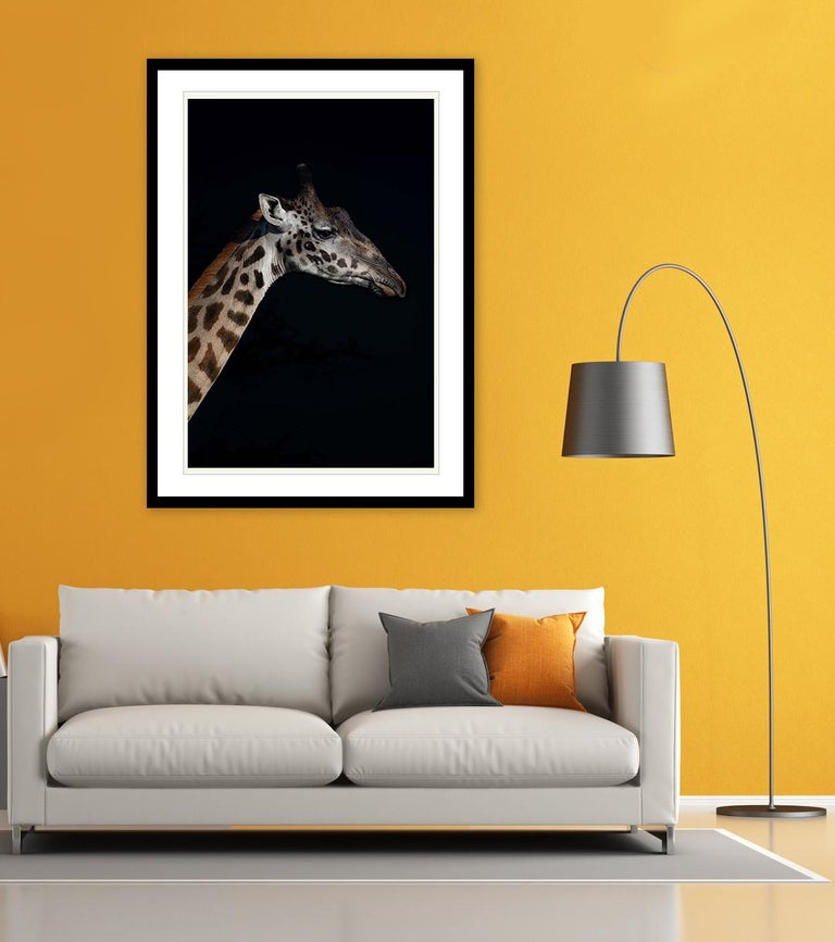 Profile of a Giraffe (Limited Edition of 25) - Animal Photography For Sale 1