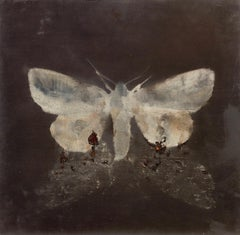moth on moth, 2015, oil wood, figurative painting, animals, Scandinavian art