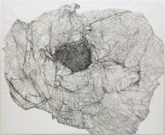 Ninho, Nettie Burnett, 2020, Contemporary, Graphite and gold leaf on canvas,Grey
