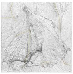 Enthropie I, Nettie Burnett, 2016, Graphite and gold leaf on canvas, Grey