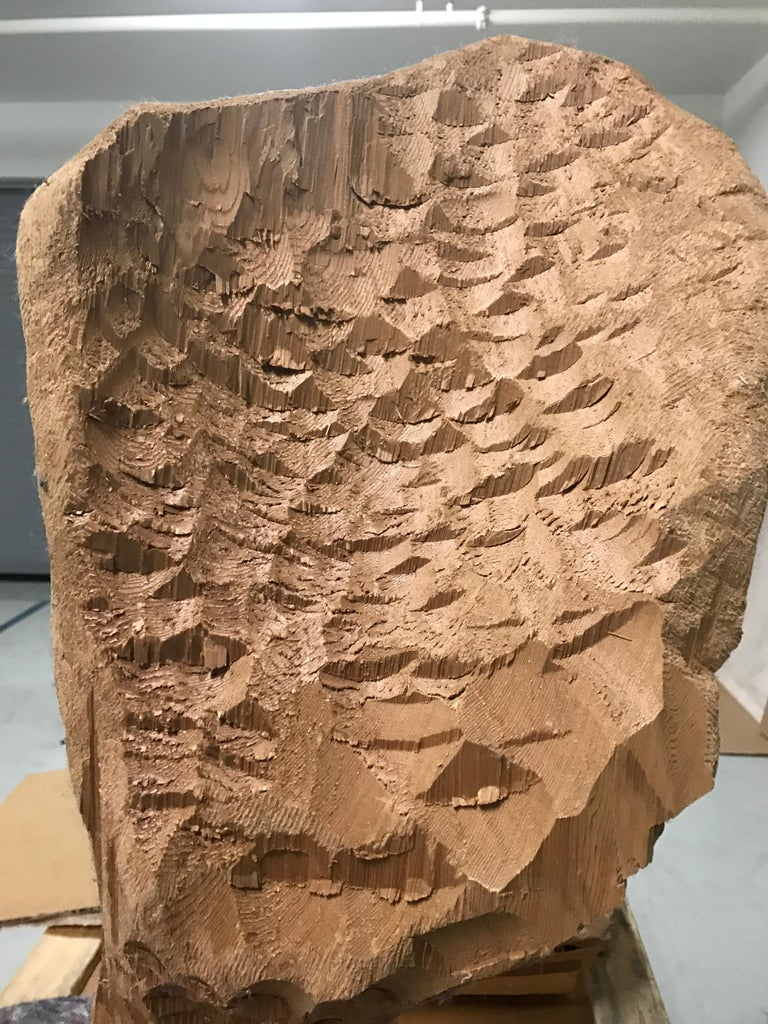 Untitled (Wood 4) - Contemporary Sculpture by David Adamo