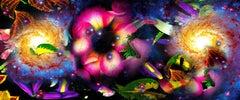 Gardens & Galaxies: Magenta Rose, vivid colors, abstract night sky nature