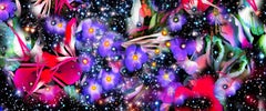 Gardens & Galaxies Purple Flowers bold colors abstract night sky patterns nature