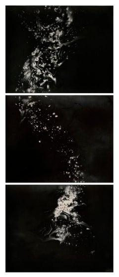 Untitled Work of Fire (Hydra Triptych)