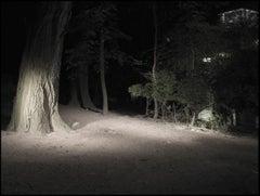 Missing Image #7 / color photograph, gender, lgbt, landscape, cruising area