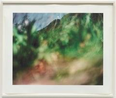 Tujunga 1 / Conceptual color photograph, nature,creation of reality, green, blue