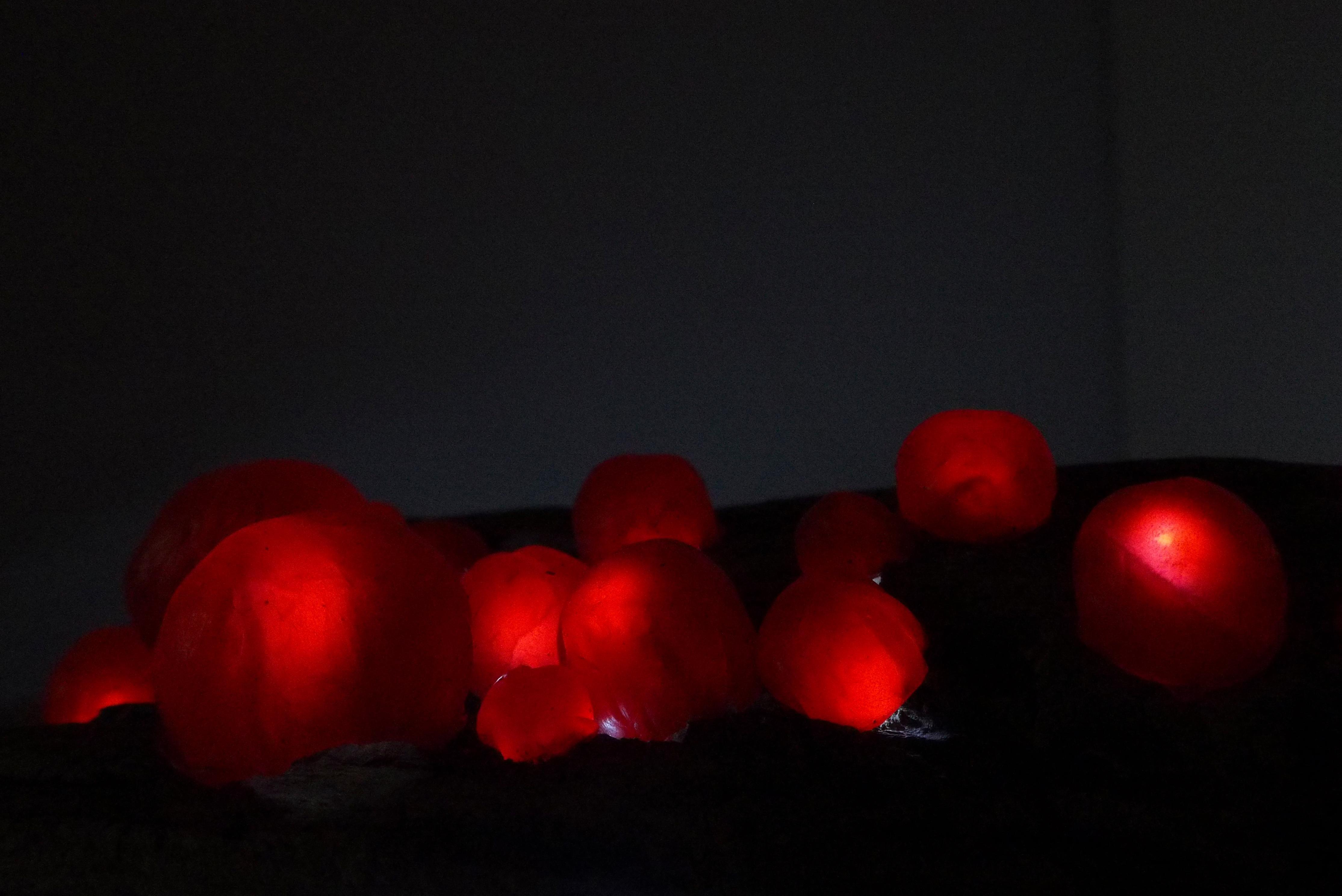 'Glowing Orbs' Red Wax, LED Lights, Driftwood, Original Tabletop Sculpture