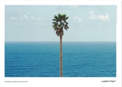 """Palm tree / seascape"" landscape photography museum poster 27 x 19 in"