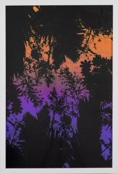 Dusk/Daybreak 2 Framed Color Photography Print  30 x 20 in. Sunset Purple Palm