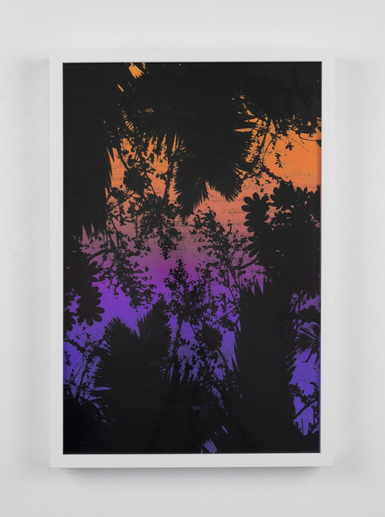 Dusk/Daybreak 2 Framed Color Photography Print  30 x 20 in. Sunset Purple Palm For Sale 1