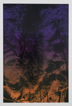 Dusk/Daybreak 5 Framed Color Photography Print  30 x 20 in.Purple Mustard Yellow
