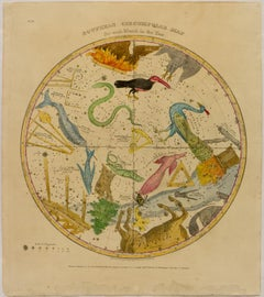 Southern Circumpolar Map for each Month of the Year (Pl. VII)