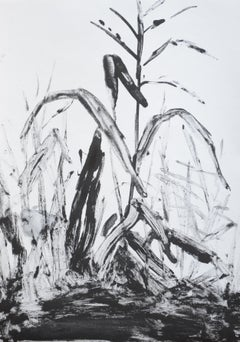 Jasper Hagenaar, Untitled (monotype in black and white of plants)
