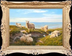 Sheep Grazing on the Cliff Top
