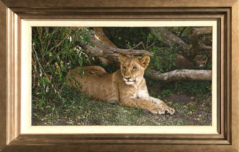 Tony Karpinski Animal Painting - Lion Cub