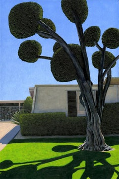 "Leah Giberson ""Palm Springs Poodle Cut"" Realism Olive Tree Mid-Century Modern"