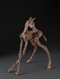 ''Turned Foal'', Contemporary Bronze Sculpture Portrait of a Horse