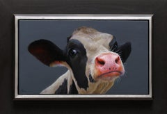 """Calf Portrait 80"" Contemporary Dutch Oil Painting of a Cow"