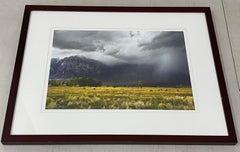 "Lloyd Baggs ""Soaring Hawk at Round Valley - Near Bishop"" Color Photo c.2010"
