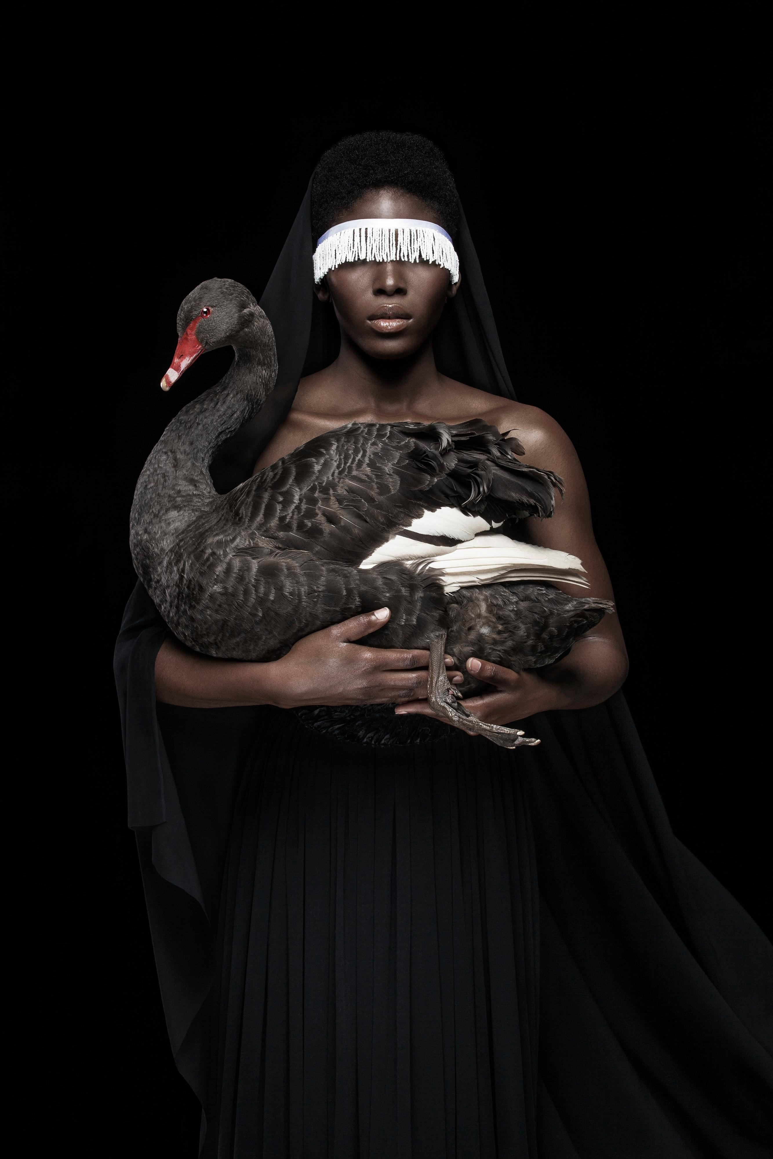 'This is not a black swan', Photographic gliclée print on 100% cotton art paper