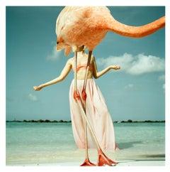 'Flamingo 2', Colourful fun fashion photographic print
