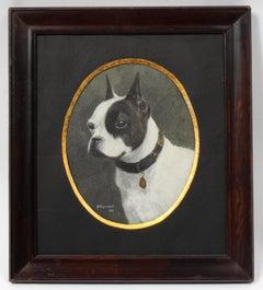 Dog Portrait Boston Terrier Framed Antique Canadian Oil Painting Oval Frame 1910