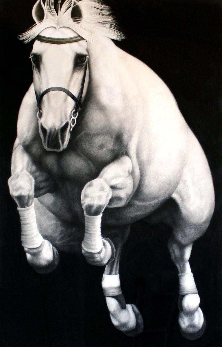 Hyperrealist Contemporary Horse Graphite Drawing Joseph Piccillo Framed B&W 2