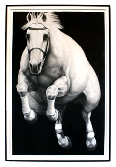 Hyperrealist Contemporary Horse Graphite Drawing Joseph Piccillo Framed B&W
