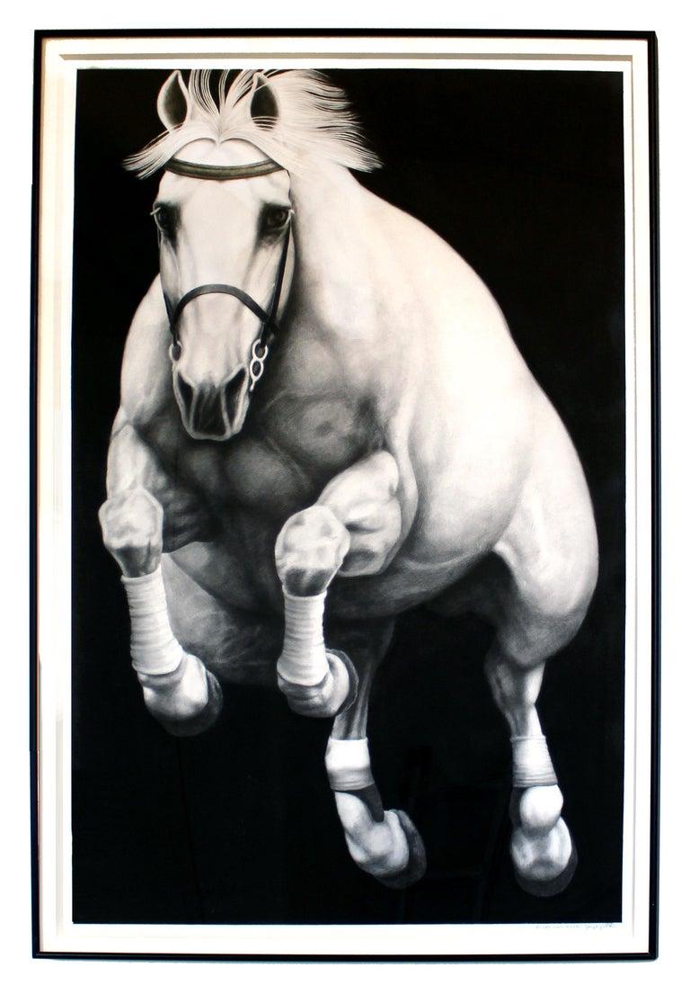 Hyperrealist Contemporary Horse Graphite Drawing Joseph Piccillo Framed B&W 1