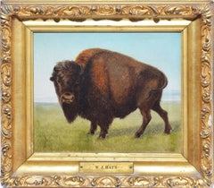 Study of An American Buffalo Western Frontier Oil Painting by William Hays Sr