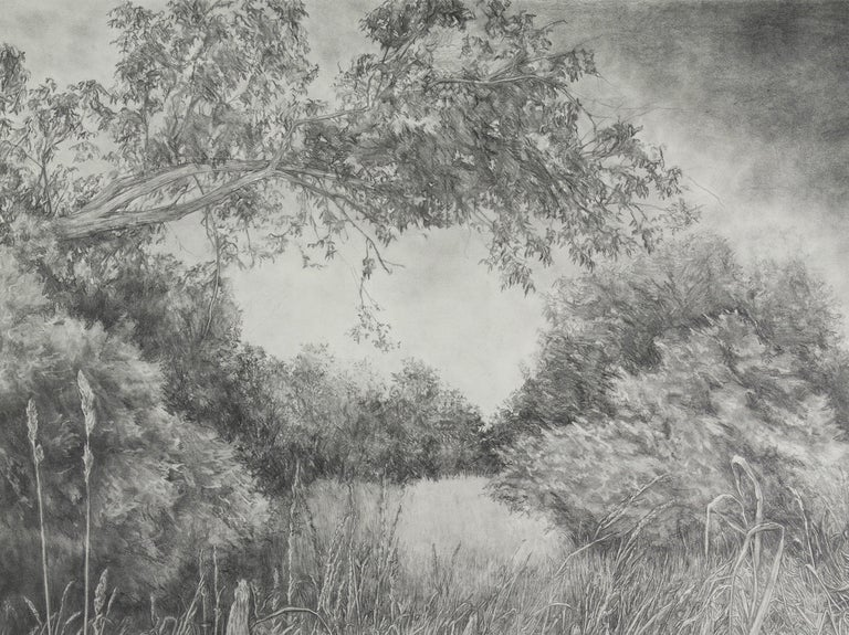 An original contemporary graphite drawing by American contemporary female artist Amanda Besl.  Diana's Field 2, 2018 Graphite on paper 34 × 24 in 86.4 × 61 cm  This work was created for the artist's large scale installation at PLAY/GROUND, which was