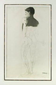 Male Torso, Nude