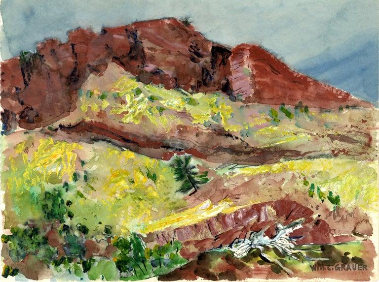 William C. Grauer Landscape Art - untitled (Hillside in Spring)