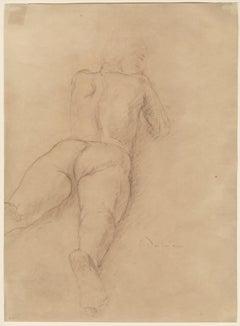 Male Nude reclining, seen from rear