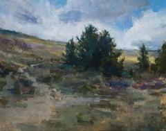 Landscape, mountains , S.W. Art 21 under 31  artist, Representational