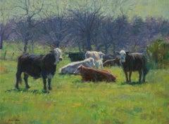 Winter Cows, Oil Painting , Texas Artist, Landscape, Southwest Art ,Cattle