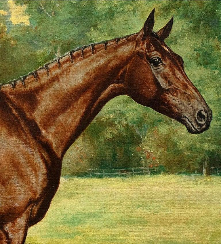 Horse Portrait-