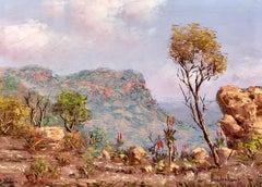 """God's Window, South Africa"""