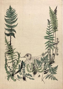 (Young Bird with Ferns)