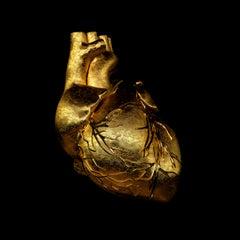 GOLDEN HEART 2017