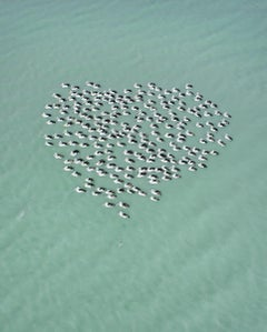 Pelican Heart, Western Australia