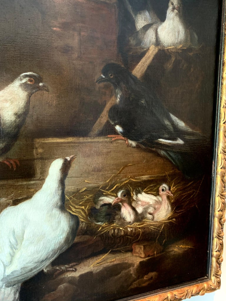 We offer a special 20% discount on this item during the Holiday Sale only until November 30.  This 17th century Italian Baroque painting is both a symbol of a happy and warm home (nest) as well as a wonderful and ornithilogically accurate depiction