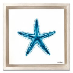 'Ocean Star' Framed Canvas Original Watercolor Painting by Laurie Duncan
