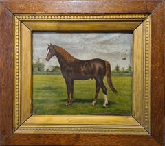 Thoroughbred Stallion, Early 20th Century Oil on Wood Panel.