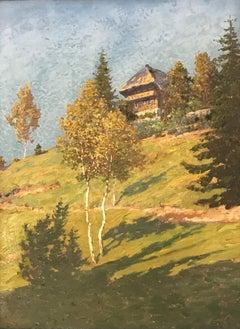 Paysage rural et chalet - Rural landscape and chalet