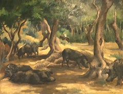 Sangliers - Boars