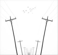 Infinity - Ed. 4/25